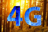 4g text on forest background.