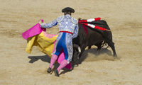 torero, bullfight, traditional Spanish party where a matador fighting a bull