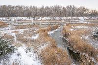 fall or winter scenery of wetlands