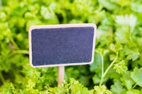 Empty chalkboard sign on food market with salad background  -