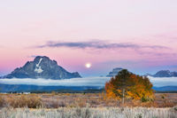 Autumn in Grand Teton