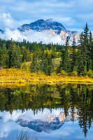 Patricia Lake amongst the yellow bushes and mountains