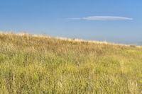 prairie at Colorado foothills
