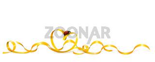 Goldband 28.jpg