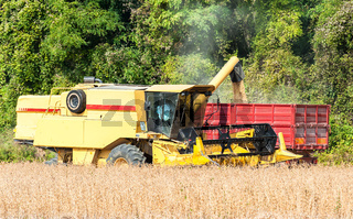 Combine harvester and tractor trailer
