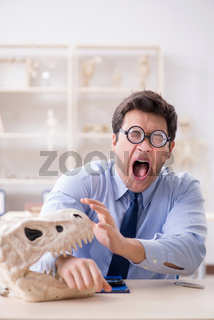 Funny crazy professor studying dinosaur skeleton