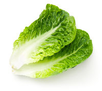 Romaine Lettuce Leaves Isolated On White Background