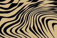 Close up Stripe Animal Pattern