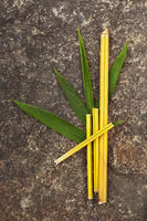 Green, yellow bamboo sticks with leaves on stone background.