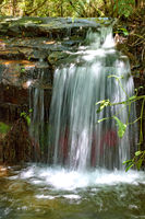 Small cascade in the rain forest interior
