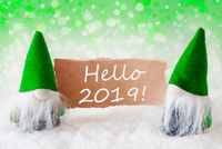 Green Natural Gnomes With Card, Text Hello 2019