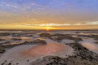 Dried Salt Marsh Colors in San Francisco South Bay.