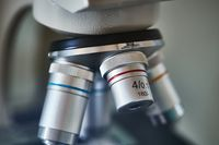 Microscope lens closeup