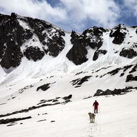 Hiker and dog in snowy mountains