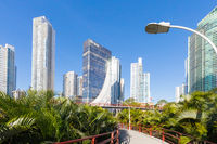 Pedestrian bridges between the Panama City palms in a sunny day