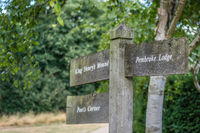 Wooden directions sign in Richmond Park
