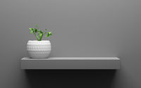 gray shelf with green potted plant on wall with light from the top