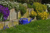 Terrassenbepflanzung, Blumenschmuck, Frühling