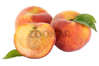 Pfirsich Pfirsiche Frucht Früchte Obst Freisteller freigestellt isoliert