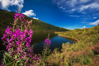 Lake in the Altai Mountains