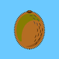 Kiwi Fruit Minimalism Art Vector