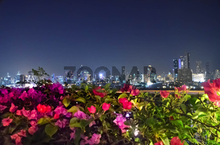 Night skyscrapers and flowers