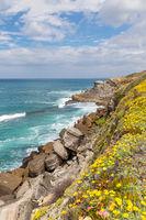 Felsenküste zwischen Praia das Maçãs und Azenhas do Mar, Portugal, Europe