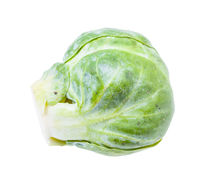 green fresh brussels sprout isolated on white