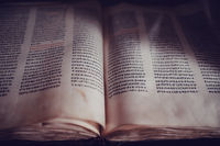 Bible in Amharic language