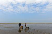 Wanderer im Watt ziehen Bollerwagen mit Strandgepäck über die Wattfläche, Deutschland
