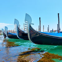 Noses of gondolas in Venice