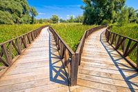 Kopacki Rit marshes nature park wooden boardwalk view