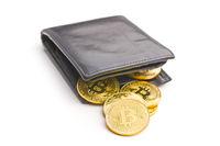 The golden bitcoins.