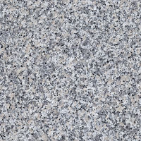 Granite Seamless Pattern