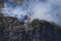 Wild fire at Piegan Pass, Going to the Sun Road, Glacier National Park