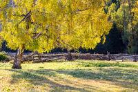 xinjiang baihaba villages in autumn