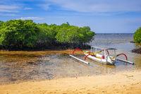 Mangrove beach, Nusa Lembongan island, Bali, Indonesia