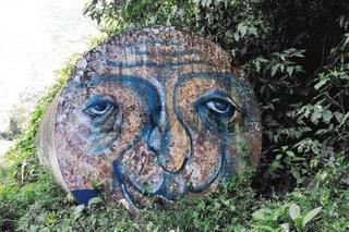 Kunst im Regenwald art