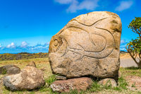 Petroglyph on Easter Island or Rapa Nui