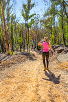 Hiking in regenerating bushland after fire