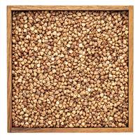 buckwheat kasha in wooden box