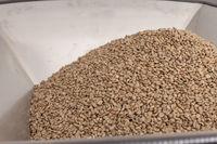 Kaffee Produktion