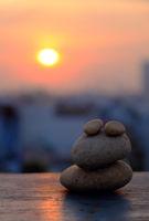 amazing shape, frog from pebble stone