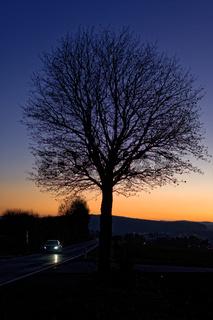 1 BA Herbstabend 7079.jpg