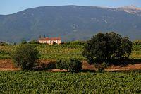 Landschaft am Mont Ventoux, Frankreich