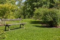 Resting bench in Kaisaniemi Botanic Garden in Helsinki, Finland