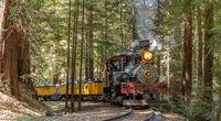 Felton, California - August 31, 2019:  Roaring Camp' Dixiana Shay Steam Train Crossing Redwoods in S