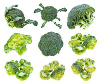 various fresh and frozen broccoli isolated