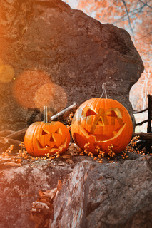 Funny pumpkins on rocks with leaves and berries