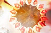 Draufsicht auf eine Pflaumen-Sahne-Torte mit Dekoration aus hellen Schokorauten